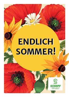 Endlich Sommer Newsletter 200525 Titel 2