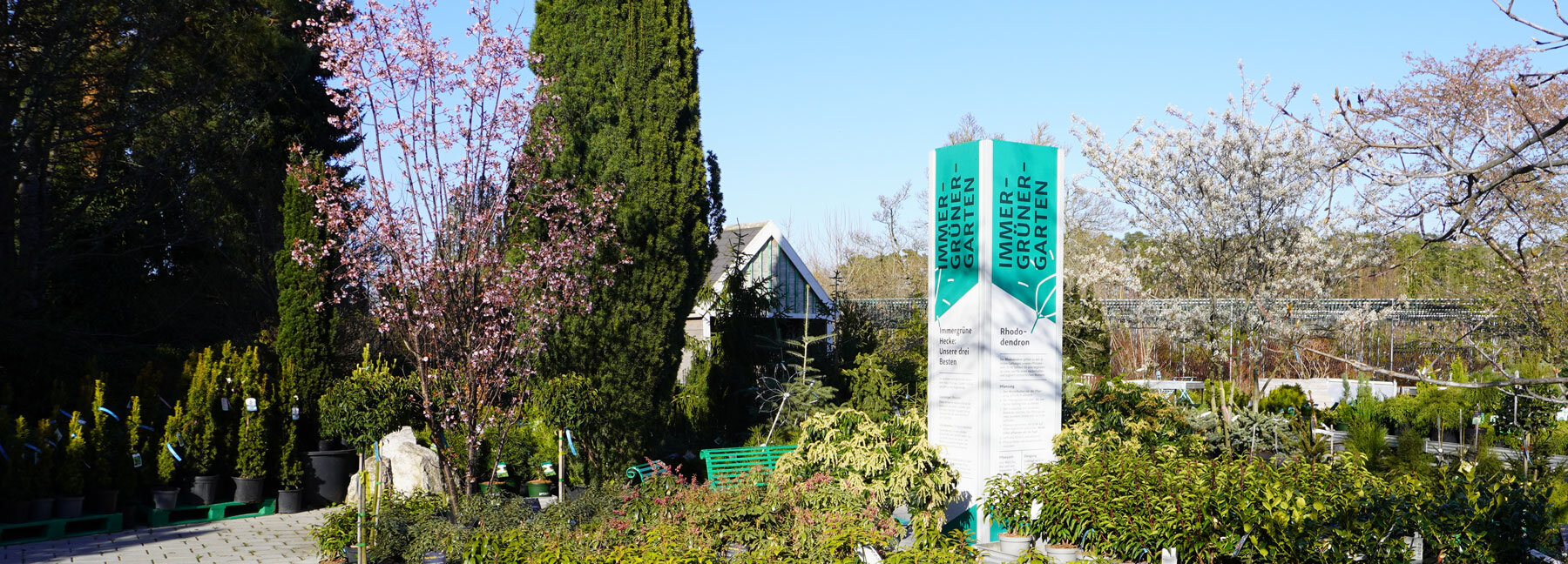 Immergrüner Garten Schopf