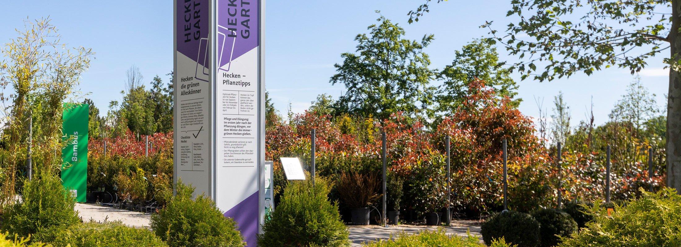 Heckengarten - Heckenpflanzen in Nürnberg / Fürth / Schwabach